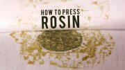 How-To-Use-Time-Temperature-For-Better-Rosin-Press-Cannabis-with-MyPress